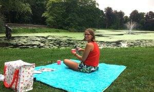 4 x picknicken in Wassenaar