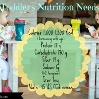 Toddler Nutrition Needs Age 1-3