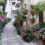 Straatje in Assisi