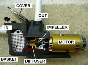 Pool pump parts