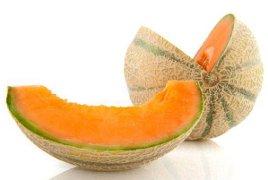 qual è la dieta del melone