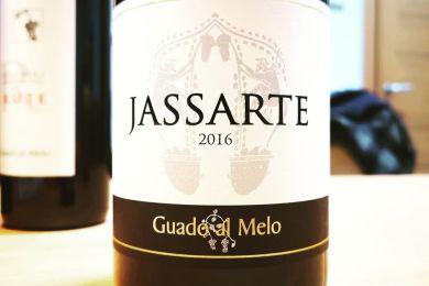 GUADO AL MELO JASSARTE 2016