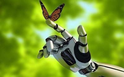 Trasformazione digitale: l'ambiente è una risorsa da preservare