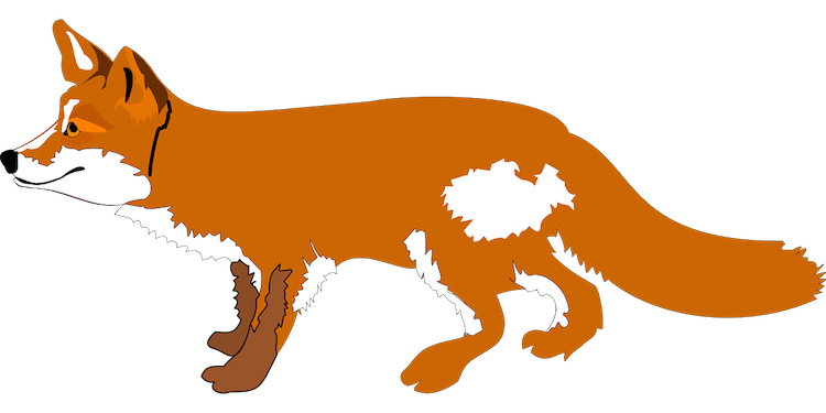 fox 48418 1280