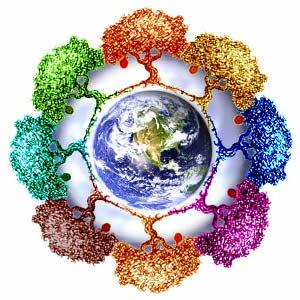 Che cos lImpronta Ecologica  Io Verde