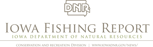 Our Picks For Iowa S Top Nine Trout Streams In 2017 Dnr