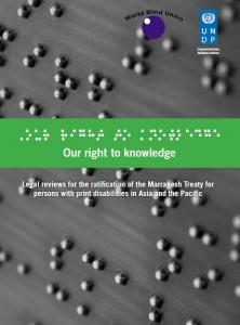 UNDP - WBU Report