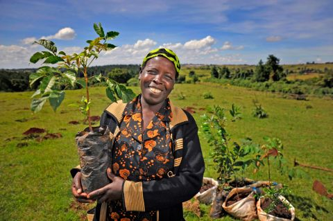 A community leader in Kenya plants a tree