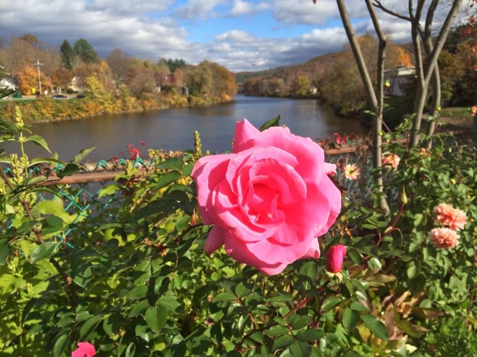 Bridge of Flowers in Shelburne Falls, MA
