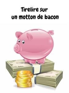 apprendre-quebecois-tirelire-cochon-argent