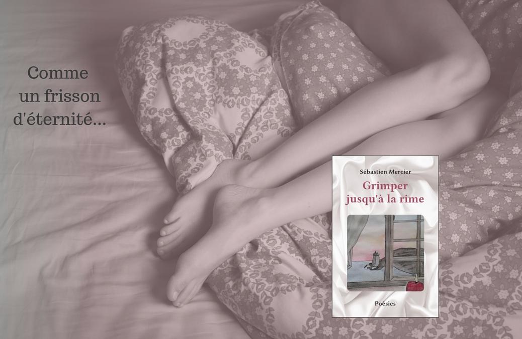 «Grimper jusqu'à la rime» de Sébastien Mercier