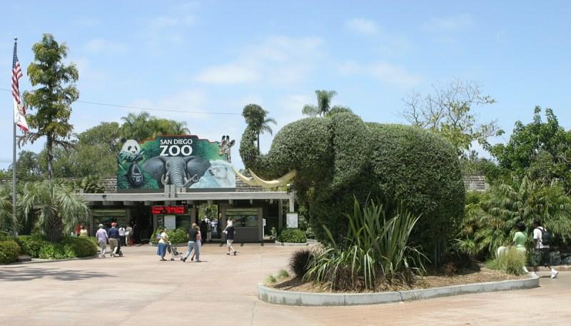 Lo Zoo di San Diego, uno dei più grandi parchi faunistici, zoo e giardini zoologici del mondo