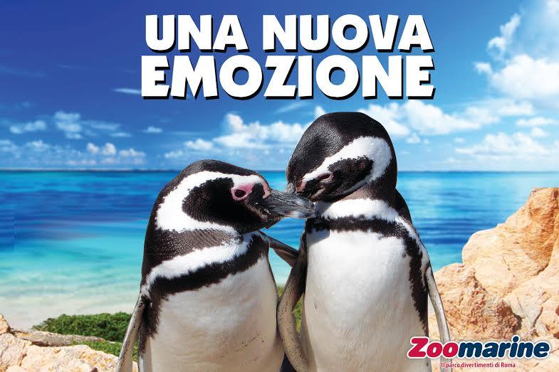 Apertura e novità della stagione 2015 del parco Zoomarine di Roma