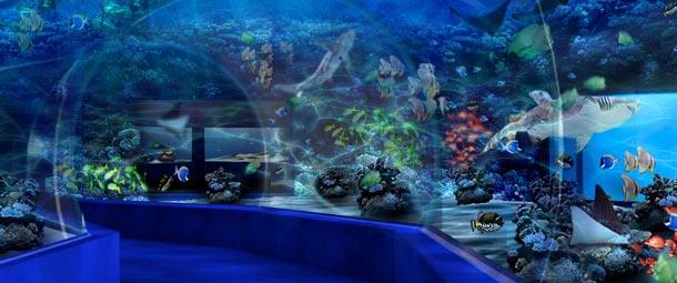 Il Manila Ocean Park, uno splendido acquario nei pressi della capitale delle Filippine