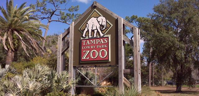 L'ingresso del Lowry Park Zoo di Tampa in Florida