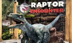 Blue, il Velociraptor di Universal Pictures e Jurassic World, debutta negli Universal Studios di Hollywood e Universal Orlando Resort