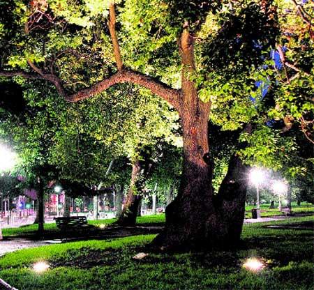 Sentado en el parque