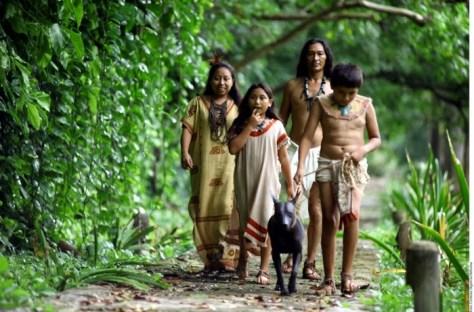 mayas20121201