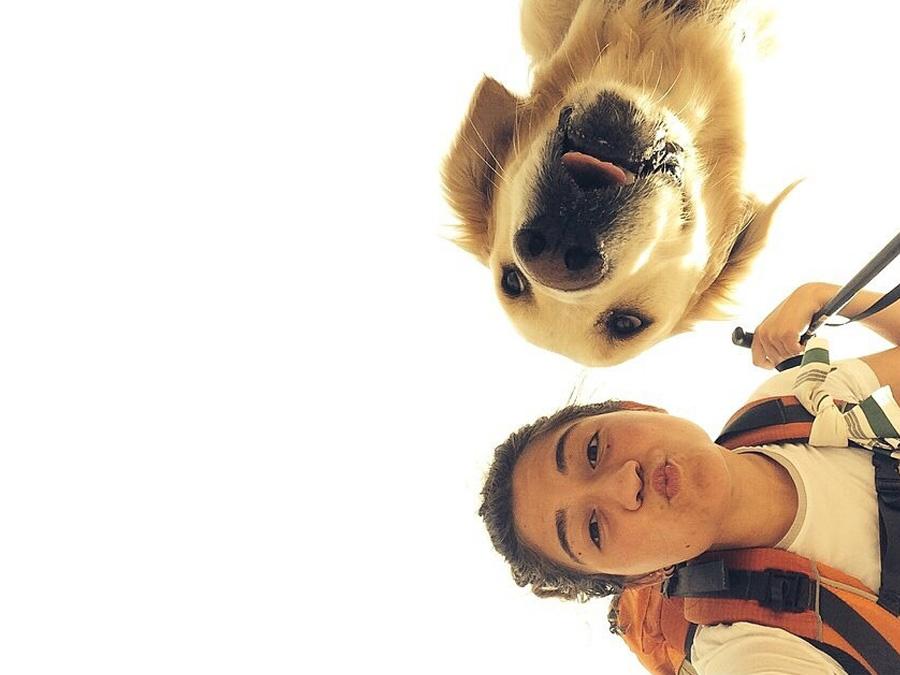 camino-de-santiago-con-perros