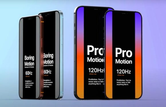 iPhone 12 pro max promotion 120hz