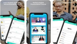 Lingwiser – Perfect English Language Learning Course