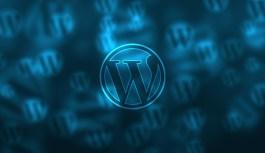 Choosing Between WordPress Hosting And GoDaddy