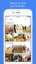 Google Photos iOS app