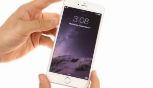 Apple iPhone 6 o iPhone 6 Plus? Ecco le differenze