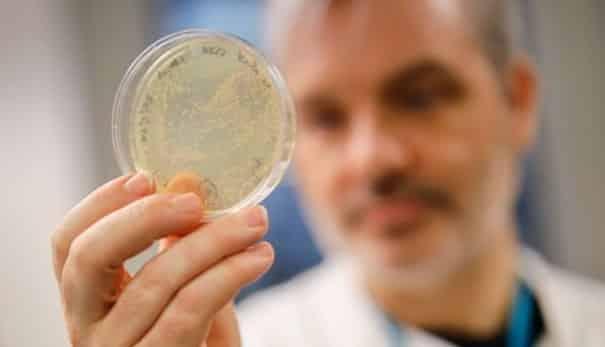 vacunas contra el corona virus