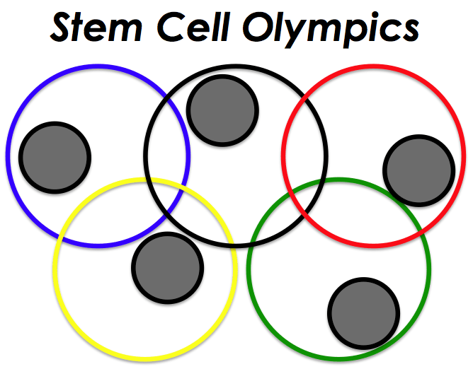 Stem Cell Olympics