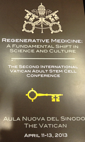 Vatican Stem Cell Meeting 2013
