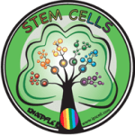 Stem Cell Person of the Year Award: Only 2 Days Left To Vote