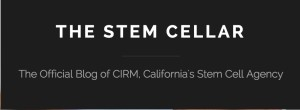Stem Cell Blog