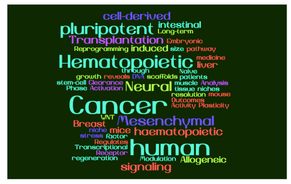 top-stem-cell-pub-word-cloud