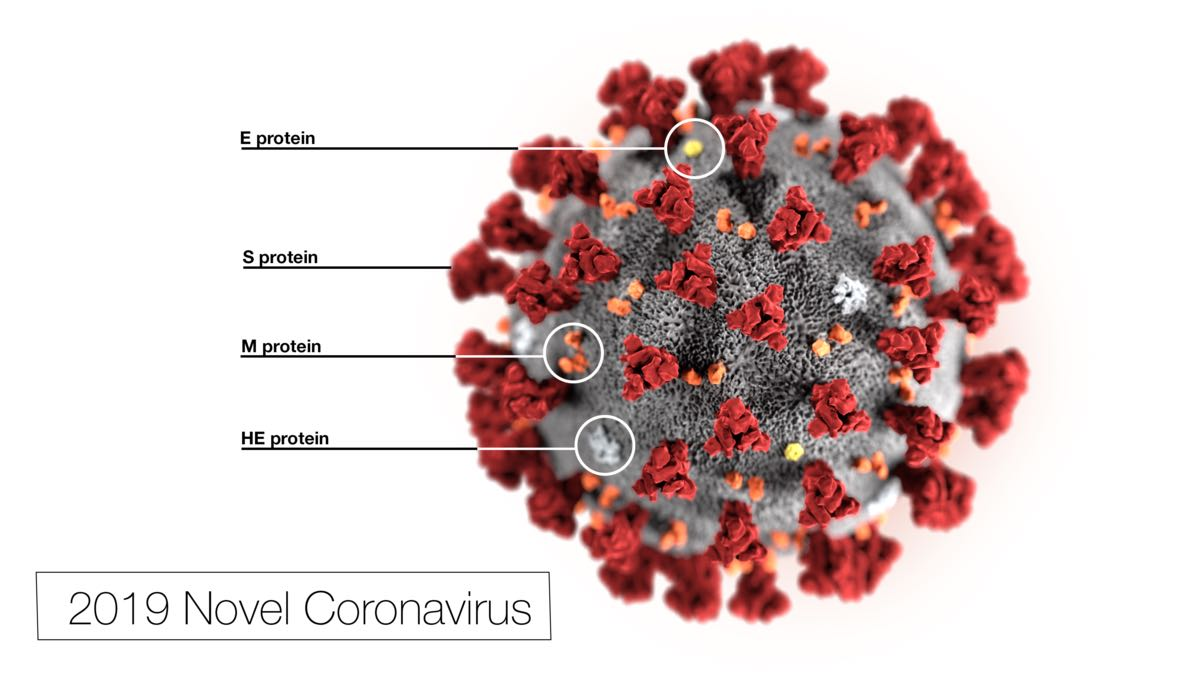 COVID-19 stem cell trials pile up during novel coronavirus ...