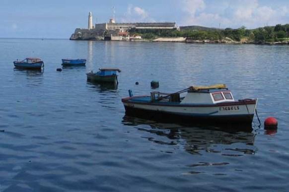 Ángel Baldrich - IPS Cuba