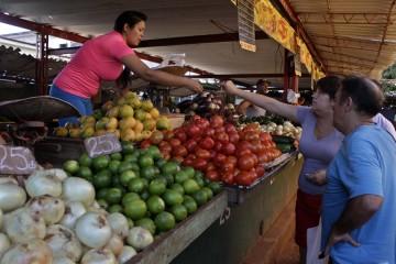 Los mercados de alimentos frescos administrados por emprendedores privados prosperan en la capital de Cuba, pero con precios que resultan inasumibles para los ingresos de la mayoría de las familias del país.