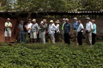 Turistas durante una visita a la Unidad Básica Producción Cooperativa Vivero Alamar, en un área rural al este de La Habana. El agroturismo es un nuevo ingrediente que algunos productores de Cuba están sumando a su actividad para mejorar sus ingresos.