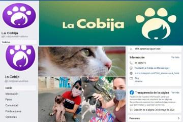 cuba plataformas digitales protección de animales