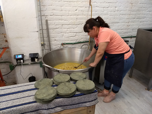 Georgina Trujillo checks the white maize that she is cooking in the back room of the Cintli tortilla factory in Mexico City. The nixtamalisation of maize, which is cooked for hours with water and lime, releases its nutritional properties. Credit: Emilio Godoy/IPS