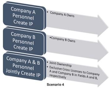 ip-ownership-4