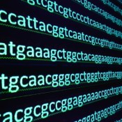 https://depositphotos.com/155745262/stock-photo-sequencing-the-gene.html