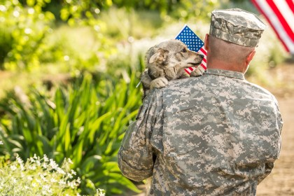 https://depositphotos.com/154852622/stock-photo-soldier-with-military-dog-outdoors.html