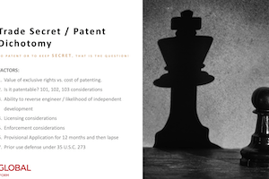 Effectively Using Trade Secret and Patent Strategy – November 14, 2019