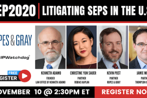 SEP2020 – Litigating SEPs in the United States – 11-10-2020