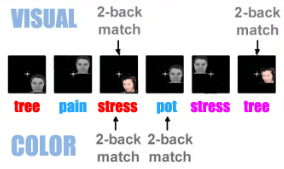 dual emotional n-back