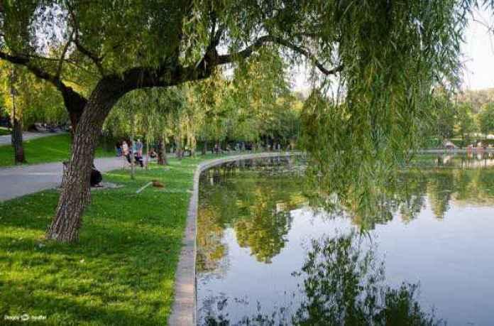 Veste bună pentru bucureșteni, vom avea net gratis în parc! Vine weekend-ul, așa că parcurile vor fi pline! În ce parc vei avea net? Intră și află!