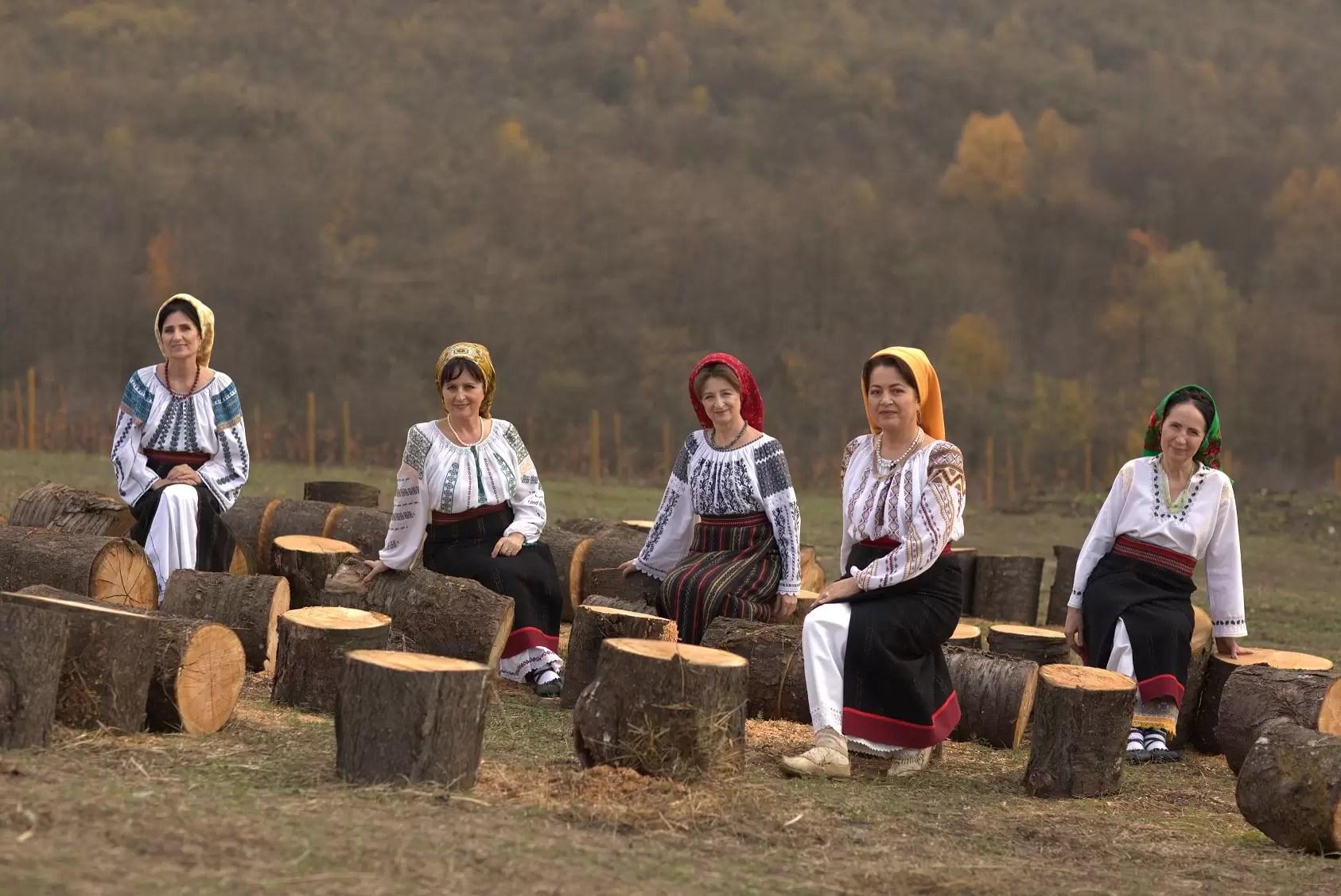 Festivalul Internațional de Film Transilvania, afis