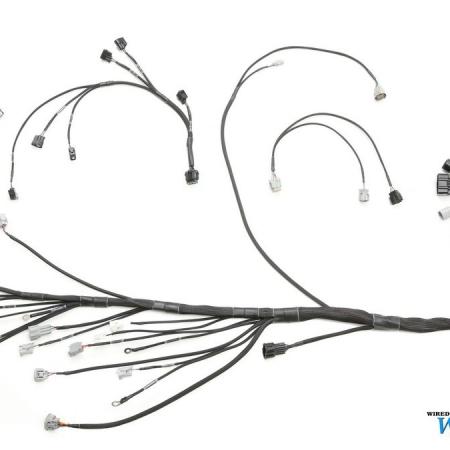 Wiring Specialties Universal 1JZGTE Wiring Harness