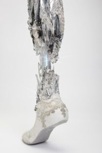 Crystalized leg photographed by Omkaar Kotedia